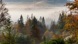 Autumn morning in the mountains, morning fog in the rays of the sun. Mountain landscape, colors of autumn.