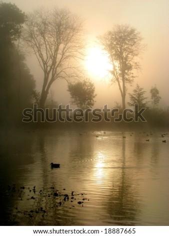 autumn morning mirror