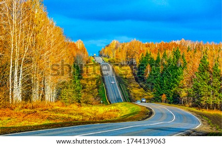Autumn mountain forest road landscape. Autumn forest road