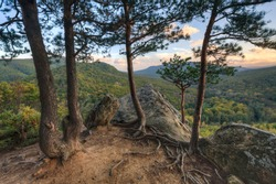 Autumn mountain forest with pine trees and rocks on foreground at sunset. Beautiful scenery. Plancheskiye Rocks, Seversky district, Krasnodar region, West Caucasus, Russia