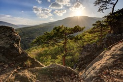 Autumn mountain forest with pine trees and rocks on foreground at sunset. Beautiful scenic landscape. Plancheskiye Rocks, Seversky district, Krasnodar region, West Caucasus, Russia.