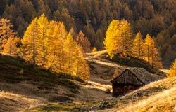 Autumn mountain hill cabin view. Autumn in mountain forest. Mountain cabin in autumn forest. Autumn landscape
