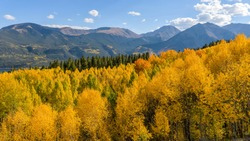 Autumn Mountains - Autumn panoramic overview of a dense aspen forest in a valley at base of towering mountains of Sawatch Range of Colorado Rocky Mountains. Twin Lakes, CO, USA.
