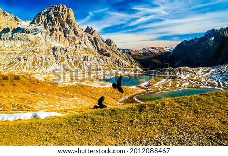 Autumn mountains in the snow. Mountain landscape. Birds fly over the mountains. Mountain valley landscape