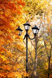 Autumn natural background with lantern lamp with texture of yellow foliage of rowan and birch leaves in warm sunbeams in good weather in the season of leaf fall in September October in the park
