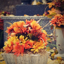 Autumn nature concept. Beautiful autumn decorations. Colorful flowers at the cemetery - Helloween.