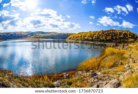 Autumn nature lake in sunny day