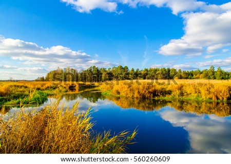 Autumn nature lake water reflection landscape #560260609