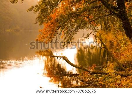 autumn of river