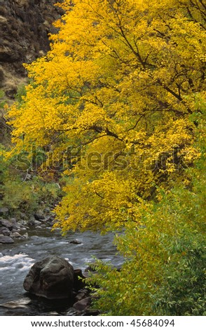 Autumn on the Little Salmon River, Idaho