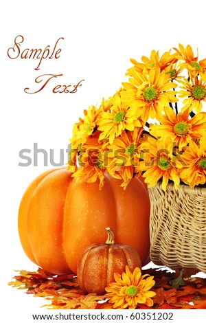 Autumn or Thanksgiving Bouquet with pumpkins and leaves against a white background. Shallow DOF. Clipping path included.
