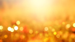 Autumn orange banner natural blurred background.Fall concept field de focused wallpaper.Panoramic sunset view.