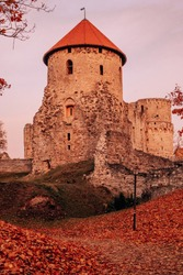Autumn orange forest trees in a park with medieval old castle with yellow leaves covering soil, evening. Beautiful foliage colors, with grain.