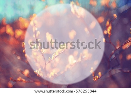 autumn park blurred background translucent frame for text - Shutterstock ID 578253844