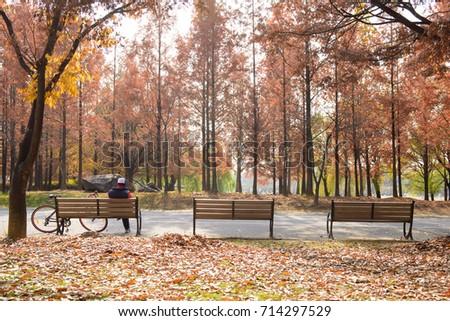 autumn park  man sitting on...