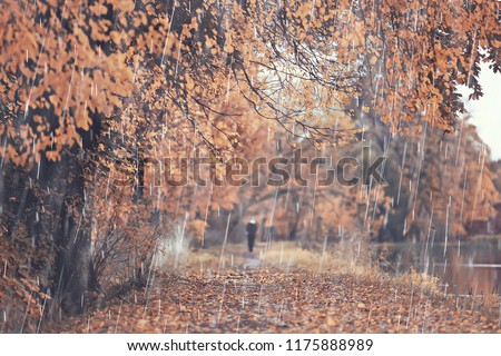 autumn park, rainy background / autumn landscape background rain texture in an October park, walk in bad weather, drops of water, windy weather, bad weather, sad mood