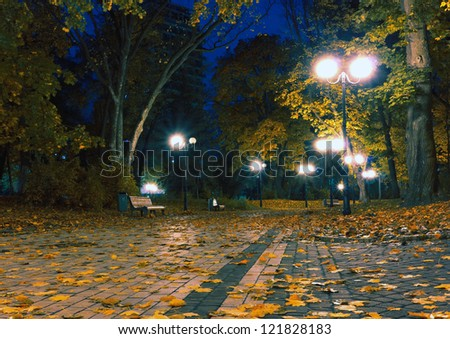 Autumn park with lamps and yellow leaves on the sidewalk at night