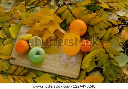 autumn picnic on the grass. defoliation