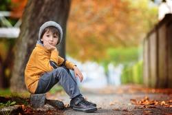Autumn portrait of beautiful preschool boy in the park