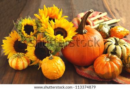 Autumn pumpkins and sunflowers