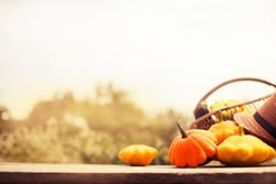 Autumn Pumpkins harvest settings table\ thanksgiving day concept background