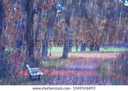 autumn rain background / bench in the park under the autumn rain, walk in cold weather, bad weather in the yellow October park, autumn landscape without people