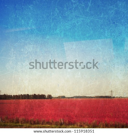 Autumn red field and blue textured sky - stock photo