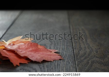 autumn red oak leaves on old oak table, rustic style