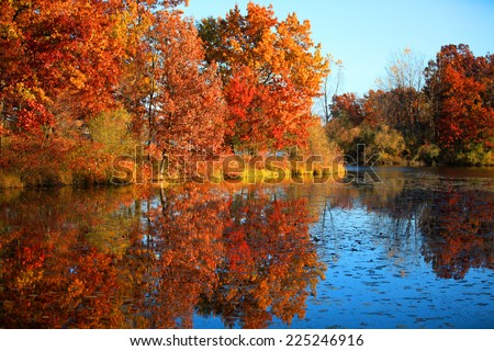 Stock Photo Autumn reflections