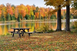 Autumn reflections on a calm pond and park. Alberta, Michigan USA