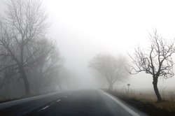 Autumn road and fog and the silhouette of trees