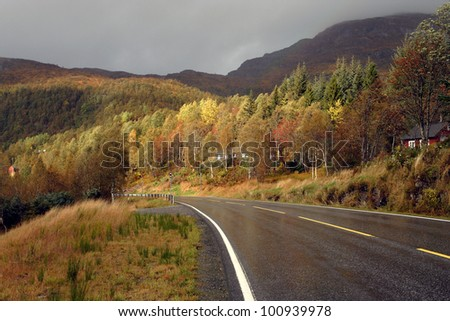 autumn road at the norwegian mountains