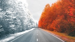 autumn road . beautiful bright autumn road landscape. red leaves on the trees