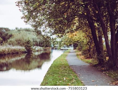 Autumn road forest near water - Shutterstock ID 755803123