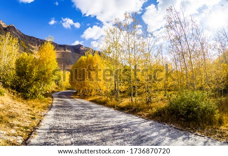 Autumn road in mountains scene
