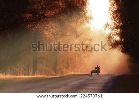 autumn road sunset  the rays of ...