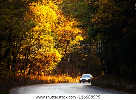 autumn road with a motion-blurred car on the curve