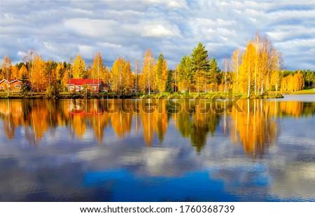 Autumn rural lake reflection water. Lake water reflection in autumn. Autumn lake view. Autumn lake landscape