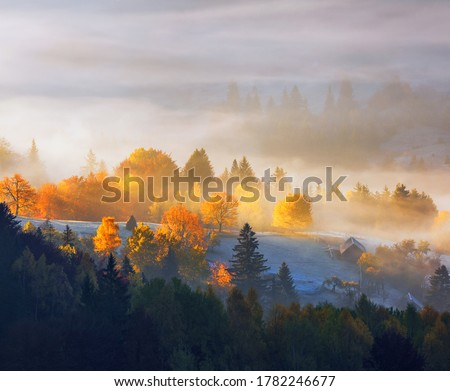 Autumn rural landscape. Natural landscape. The lawn is enlightened by the sun rays. Fantastic scenery with morning fog. Green meadows in frost. Picturesque resort Carpathians valley, Ukraine, Europe.