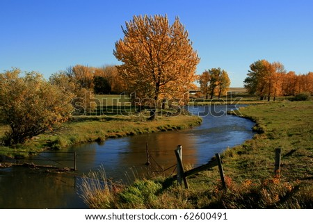 Autumn rural scene; golden coloured trees, creek/river reflections; blue skies; farming country, Alberta, Canada