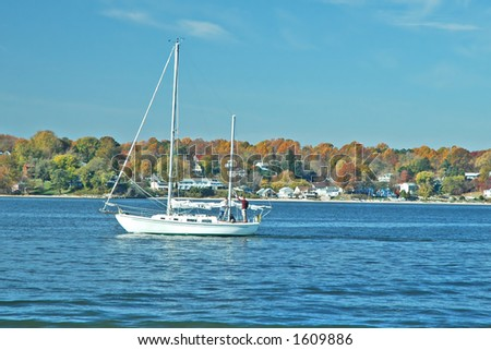 Autumn Sail on the Chesapeake
