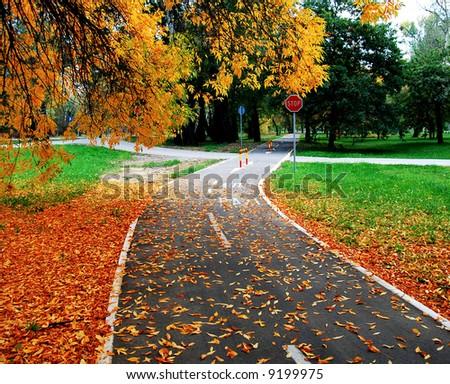 Autumn scene at the park