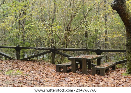 Autumn scene in a natural park with  picnic and recreation facilities.
