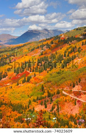 Autumn scene in Colorado
