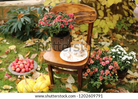 Autumn scene with flowers in cooper planter, antique china cup of coffee on saucer, apples on vintage child chair, leaves background, pumpkins on grass, outdoors and space, vertical photo, daylight