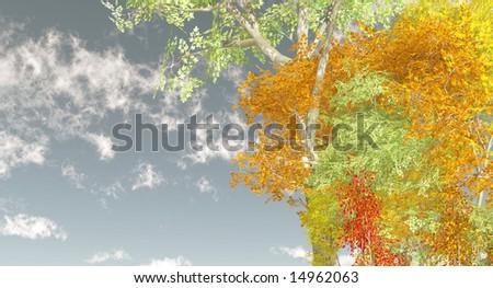 Autumn scenery - Shutterstock ID 14962063