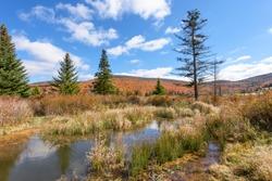 Autumn Scenic in West Virginia at Canaan Valley Wildlife Refuge