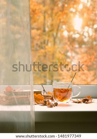 autumn season background. tea cup, leaves, acorns, boooks on windowsill. Beautiful fall time. cozy autumn home interior. copy space.