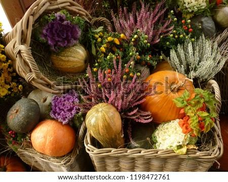 autumn still life #1198472761