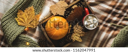Autumn still life from tray full of pumpkin, leaves, cones, scarf, mug of cocoa, coffee or hot chocolate with marshmallow on plaid with garland. Concept warm home comfort.